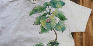 観葉植物ウンベラータのTシャツにイングリッシュローズのオーダー