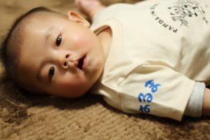 手描きTシャツ ベビーロンパース 神戸のパンダ 出産お祝い 名入れ